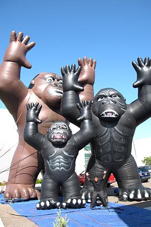 Kong-Family-2.jpg