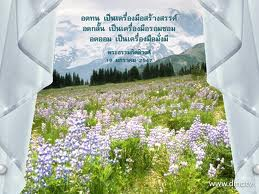 imagesCAVPF4AR.jpg